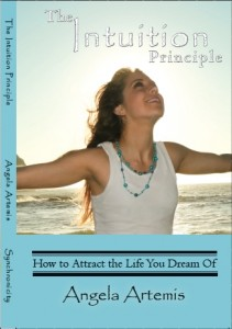 The Intuition Principle COVER ART