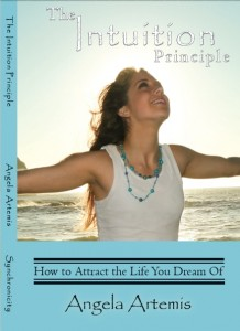 Intuition Principle Front Cover