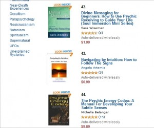 "Navigating by Intuition an ""Amazon Top 100 Paid Kindle Store"" book"