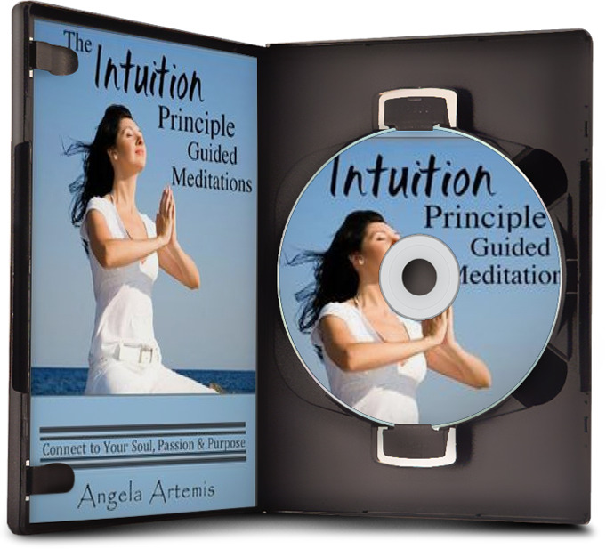 Intuition Principle Guided Meditations - 14 Exercises to Connect to Your Soul, Passion and Purpose