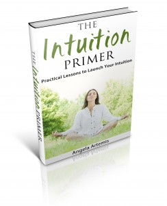 The Intuition Primer book