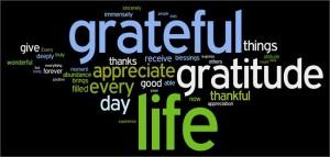 Gratitude from searchingtheinnerme.blogspot.com