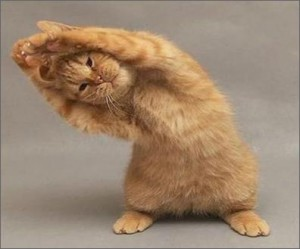 Health befits of yoga